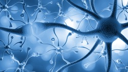 Neurons cells close up
