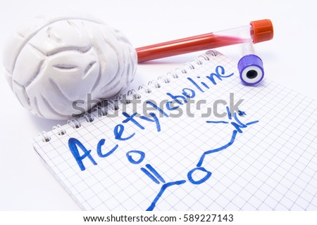 Neurotransmitter Acetylcholine. Laboratory test tubes with blood, and a model of the human brain are near to inscription Acetylcholine. Functions and effects of organic chemical diseases development