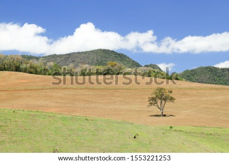 New arable land being prepared on the border between MG and ES, Vale do Paraíso, borders of Caparaó National Park, Brazil. #1553221253