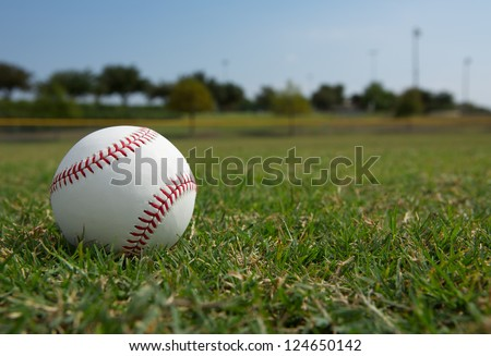 New Baseball in the Outfield