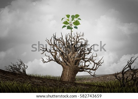 New beginning and the cycle of life concept of hope and recovery as a sapling plant growing from a dead tree as a psychology of a start or young business determination with 3D illustration elements.