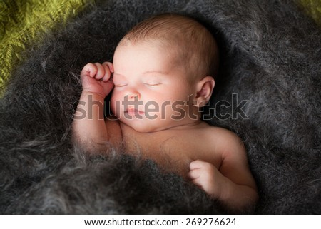 new born baby is sleeping in downy shawl, lying baby, eyes are closed