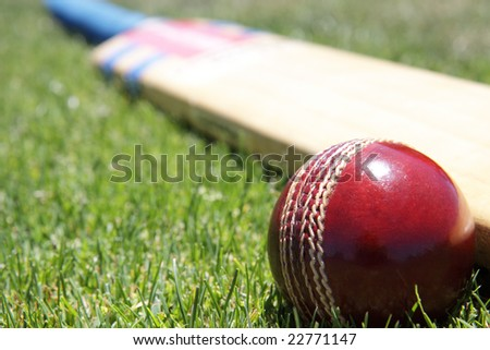 cricket bat and ball and stumps. stock photo : New cricket ball