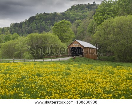 New England covered bridge in the state of Vermont surrounded by dandelions