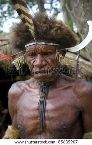 NEW GUINEA, INDONESIA -DECEMBER 28: An unidentified warrior of a Papuan tribe in traditional clothes and coloring in New Guinea Island, Indonesia on December 28, 2010 - stock photo