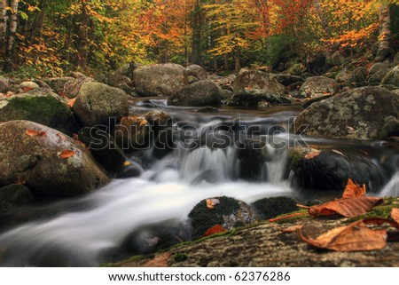 New Hampshire autumn stream in the white mountains area.