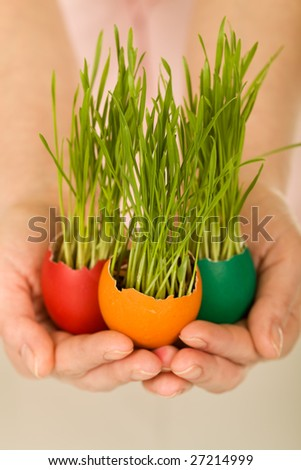 New life concept with easter eggs and grass in woman hands - shallow depth of field