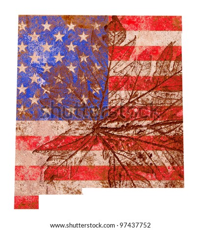 New Mexico state of the United States of America in grunge flag pattern isolated on white background