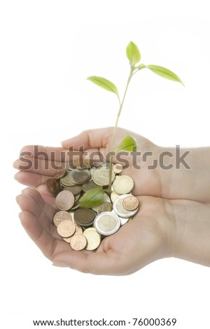 new plant sprouting from a hand with money - concept for business, innovation, growth and money. isolated on white