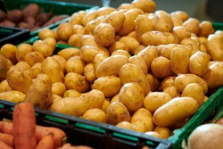 New potatoes. A heap of fresh organic vegetables in green container at the farmers market.