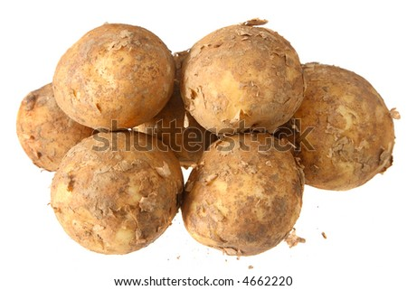New potatoes covered in soil, isolated on a white background.