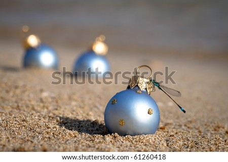 New year at the beach! Christmas ornaments standing in the sand near the water with a dragonfly on it.