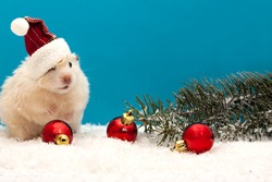 New year's eve hamster with red balloons and the Christmas tree