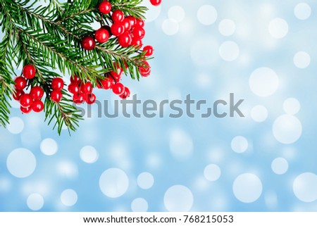 New Year tree branches and a berry of a viburnum on a blue snow background #768215053