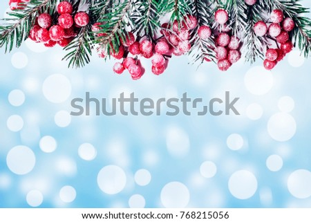 New Year tree branches and a berry of a viburnum on a blue snow background #768215056
