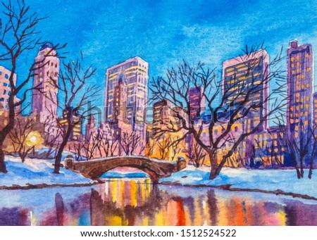 New York central park. Winter night park, lake, bridge. Big city NYC