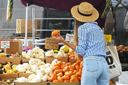 New York City - Fall 2017: Women looking at mini pumpkins at the farmer's market
