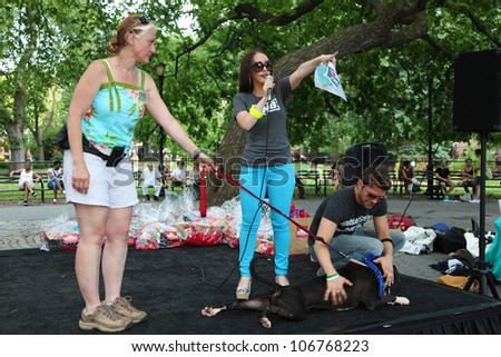 NEW YORK CITY - 1 JULY 2012: Adopt, a coalition of  rescue groups, hosts its first adoption fair in Tompkins Square Park. Co-founder Emily Tanen makes introductions on 1 July 2012 in New York City