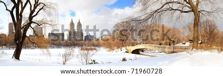 New York City Manhattan Central Park panorama in winter with ice and snow over lake with bridge,  skyscrapers and blue cloudy sky at dusk. #71960728