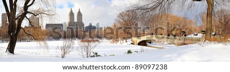 New York City Manhattan Central Park panorama in winter with ice and snow over lake with bridge,  skyscrapers and blue cloudy sky at dusk. #89097238