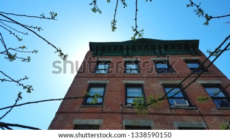 New York City- Tall Red Brick Row House Backlit on a Clear Day with Blue Sky and Budding Trees in Foreground in Bed Stuy, Brooklyn #1338590150