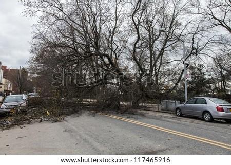 NEW YORK - NOVEMBER 1, 2012: Fallen trees caused by Hurricane Sandy block a street in Brooklyn NY, near Asser Levy Park on November 1, 2012, Brooklyn, NY