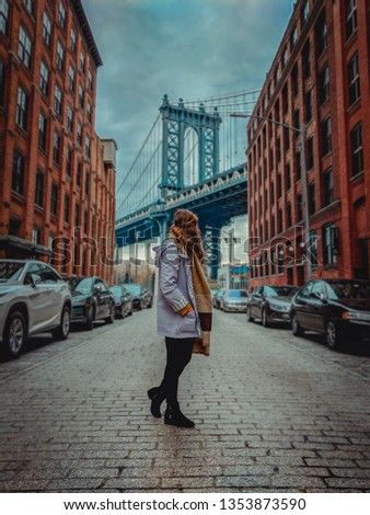 New York's stunning Manhatten Bridge caputred in Winder 2018 #1353873590