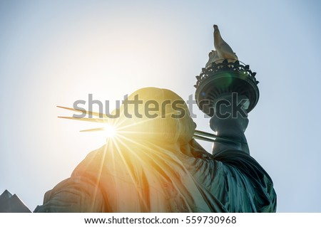 New York; statue of liberty in the sunset #559730968