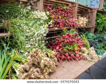 New York, USA. The farmers market with freshly picked vegetables. Local producers. Fresh produce. Different kind of vegetables displayed on stalls