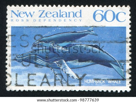 NEW ZEALAND - CIRCA 1988: A stamp printed by New Zealand, shows whale Humpback, circa 1988