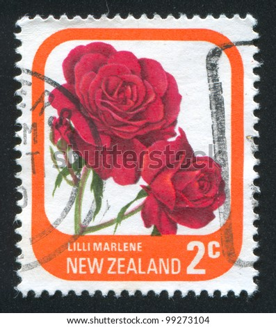NEW ZEALAND - CIRCA 1975: stamp printed by New Zealand, shows flower  Rose Marlene, circa 1975