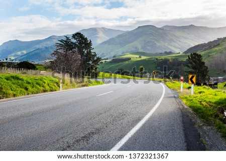 New Zealand  curvy road with trees and  green landscape on a sunny cloudy day #1372321367