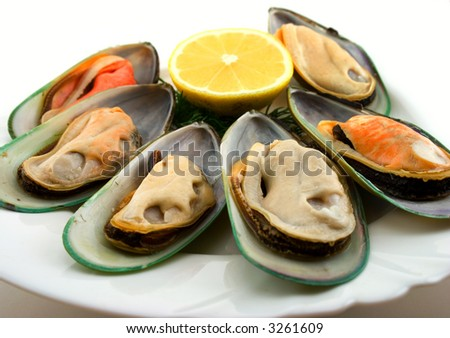 New Zealand green mussels on dish - stock photo