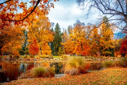 New Zealand Queenstown Garden in fall season