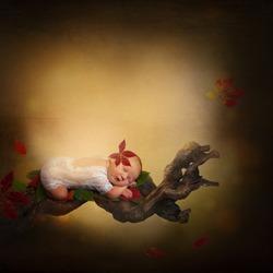 Newbon autumn photomanipulation falling leaves