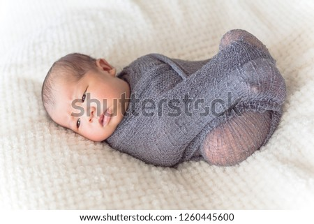 Newborn Asian baby boy swaddled in purple knitted mohair wrap. Lovely portrait of 6 day old infant lying on the bed with cozy blanket background