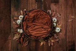 Newborn autumn background - wooden bowl with fall leaves and cream pumpkins on dark wooden planks backdrop.