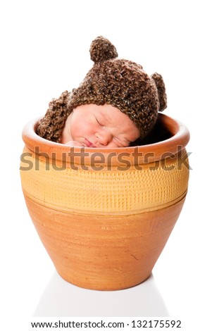 Newborn baby boy resting in a flowerpot with a knit hat