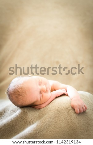 Newborn baby boy sleeping on the job during photoshoot with light brown backdrop