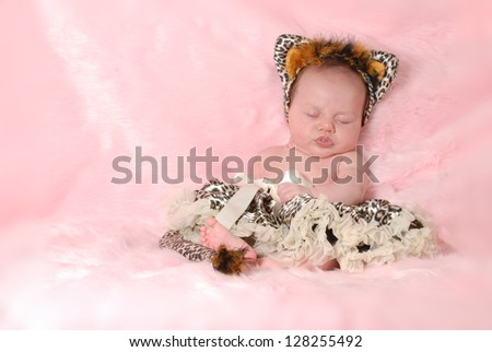 newborn baby dressed up like a cat on pink background - 2 months old