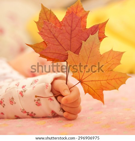Newborn baby hand holding autumn leaves close-up.