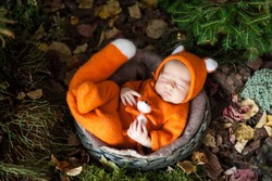 Newborn baby in cute fox outfit sleeping in a nest. Fall halloween thanksgiving card