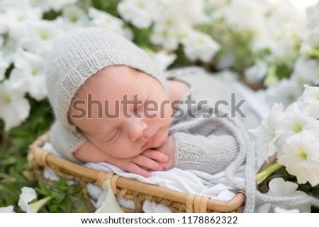 newborn baby. newborn photo shoot . newborn baby in white flowers . the kid in the gray suit. sleeping child. nature. flowers
