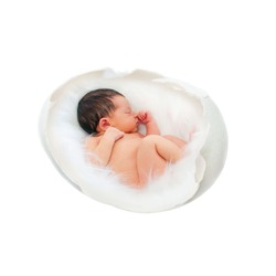Newborn baby sleeps and sucks a finger. Newborn baby sleeping inside the egg. New life, child, fetus, embryo, conception, conceiving, impregnation, fertilization, IVF concept. Isolated on white.