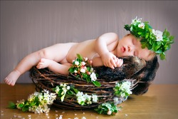 newborn baby sleeps in a nest with a wreath on head