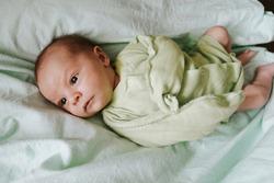 Newborn baby wearing bodysuit lying in bed. Top view. Infant boy.