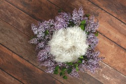 Newborn digital backdrop. Wreath of lilac flowers on wooden background. White furs.