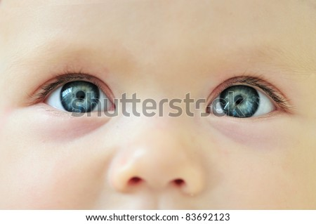 Newborn eyes and nose,  close-up