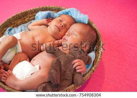 c5477544b Free photos Lovely newborn two twins girl are sleeping
