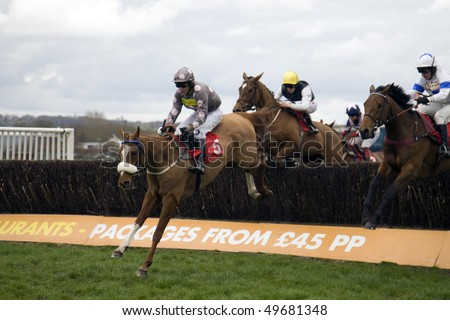 NEWBURY, BERKS- MAR 27: Jockey Brian Harding takes double hit over fences in the 2nd race at Newbury Racecourse, UK, March 27, 2010 in Newbury, Berks